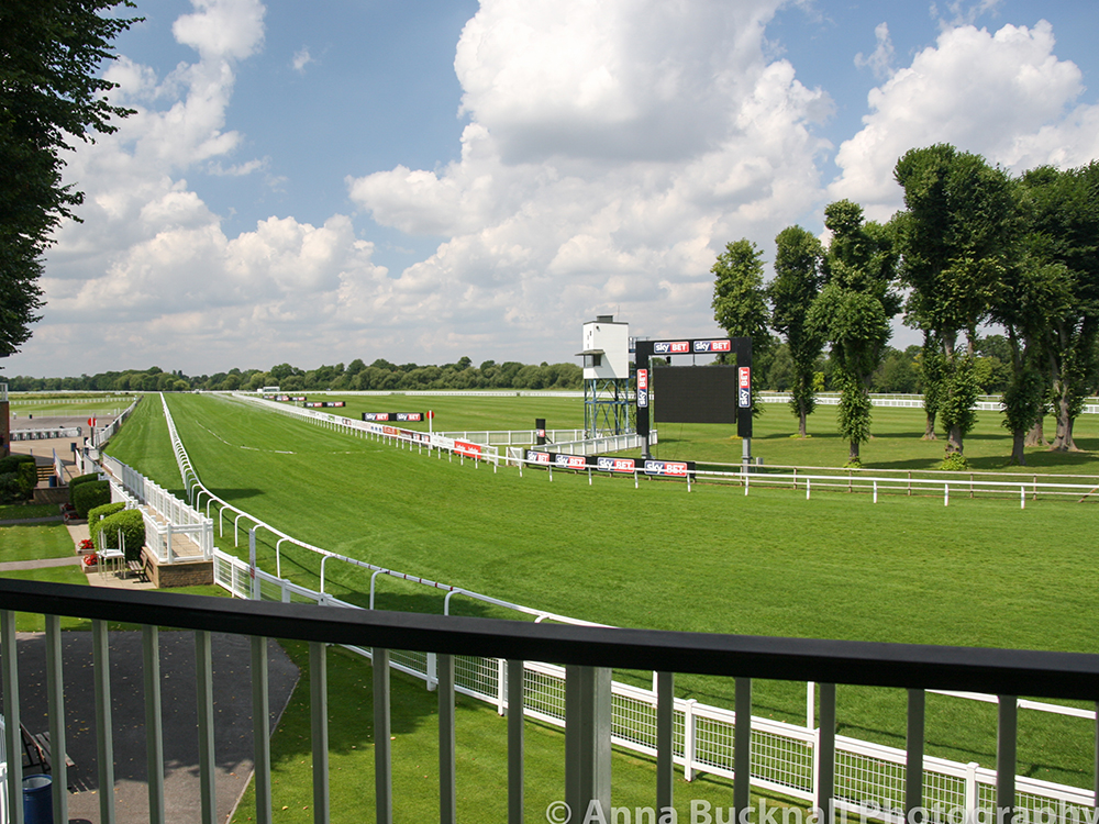 windsor-racecourse