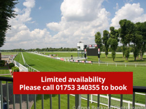 windsor-racecourse-limited